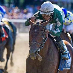 With jockey Jose Lezcano in the irons, Zivo (3) won the Suburban Handicap at Belmont on July 5, the horse's fifth victory in as many starts this year.