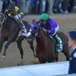 Commanding Curve (black and yellow silks), owned by West Point Thoroughbreds, finished second to California Chrome (5) in the Kentucky Derby.