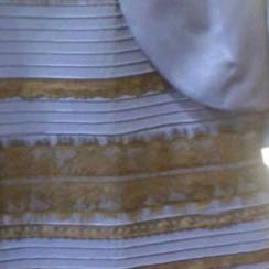 The Dress color debate