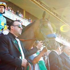 American Pharoah competed for the Triple Crown on Saturday at the Belmont.