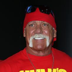 Hulk Hogan gone WWE website wrestling