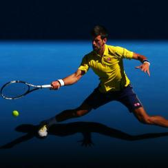 novak djokovic match fixing allegations australian open