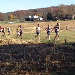 cross country runner hit by deer video