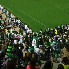 atletico nacional fans chapecoense