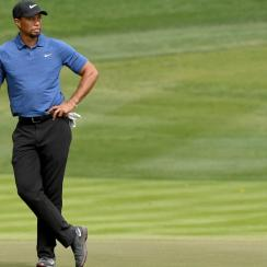 Tiger Woods just revealed that he underwent his fourth back surgery in less than three years.