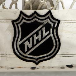 Seattle NHL expansion team names registered by Oak View Group