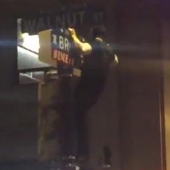 eagles fans climb street poles crisco