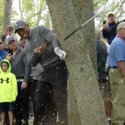 Tiger found a creative way to get out of the trees on Thursday.