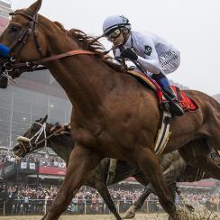 Justify wins 143rd Preakness Stakes