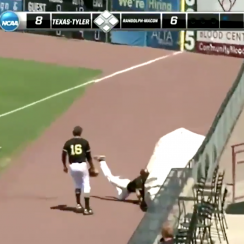 Division-III baseball player's amazing catch (video)