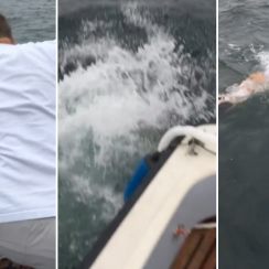 Fisherman jumps off boat to catch fish (video)