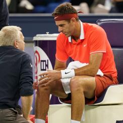 Juan Martin del potro knee injury fracture patella