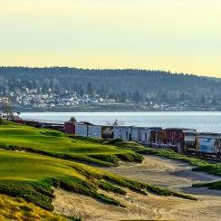 Trains that chug along the BNSF Railway line add to Chambers Bay's singular atmosphere.