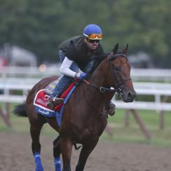 Triple Crown winner American Pharoah, with exercise rider George Alvarez up, works out at Saratoga Race Course on Thursday, Aug. 27, 2015, in Saratoga Springs, N.Y. American Pharoah is the overwhelming 1-5 favorite in a 10-horse field for Saturday's Trave