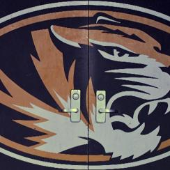 Man breaks into Mizzou Arena, causes $100,000 in damages
