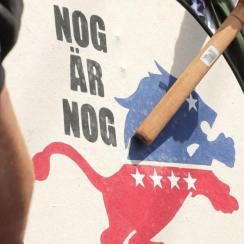 Lions Denounce Use of Logo at White Nationalist Rally