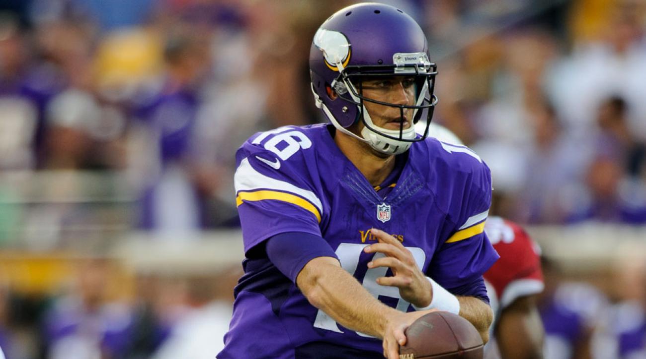 Matt Cassel Minnesota Vikings quarterback