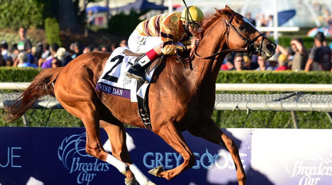 Wise Dan Horse Racing