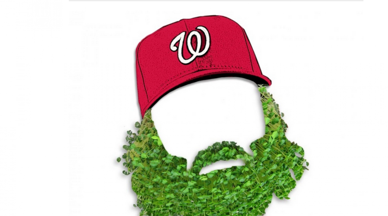 Nationals Jayson Wearth Chia Pet