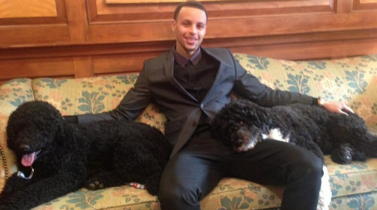 Stephen Curry hangs out with Obama family dogs