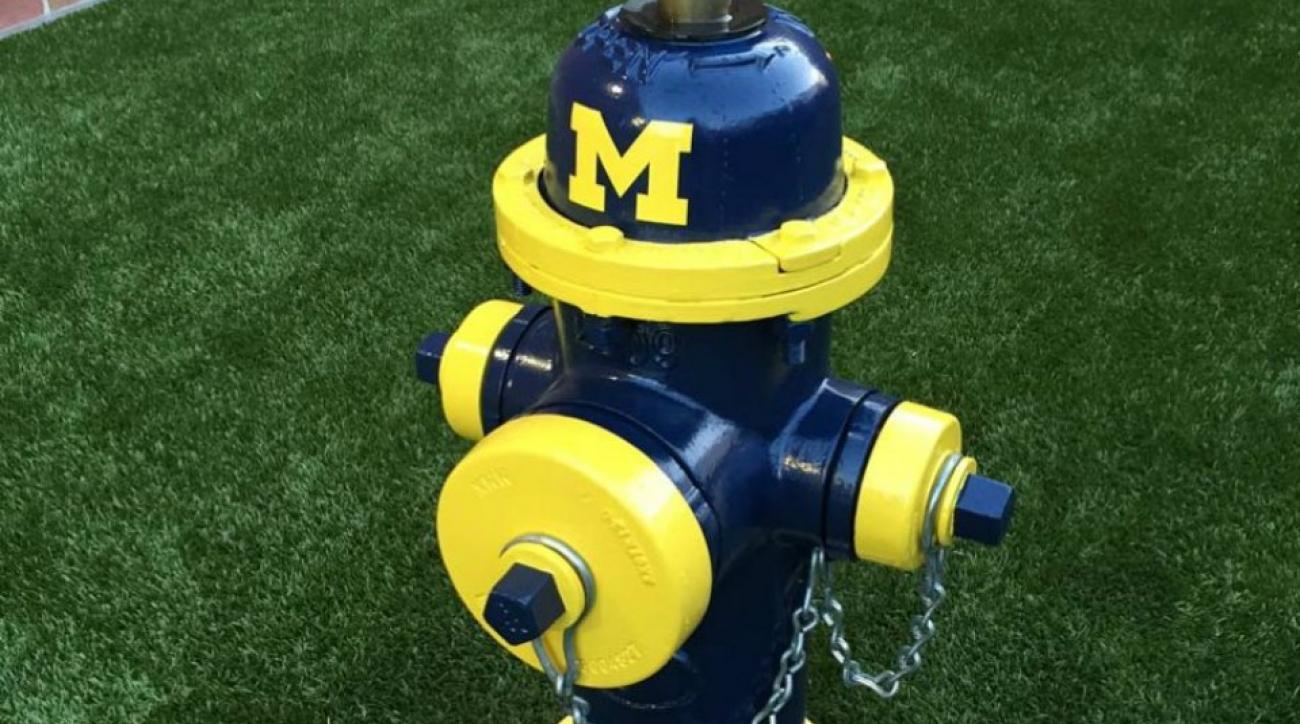 Ohio State veterinary college has Michigan fire hydrant