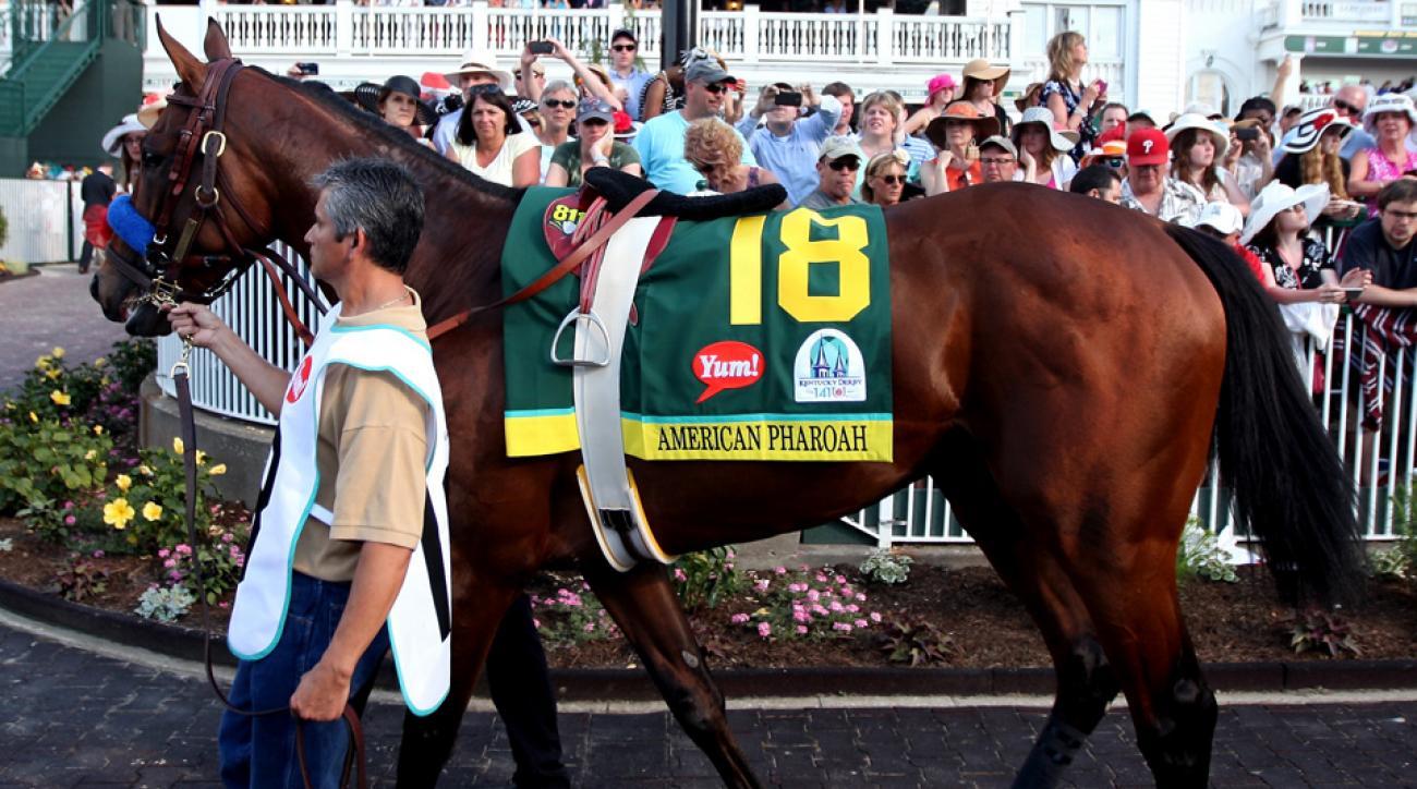 american pharoah triple crown preakness odds