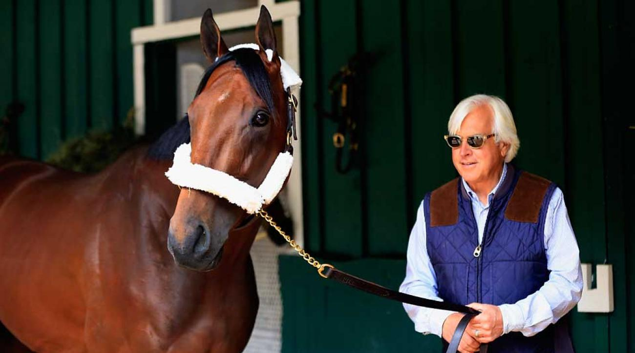 Trainer Bob Baffert's American Pharoah is the 2–3 betting favorite for the Preakness Stakes.