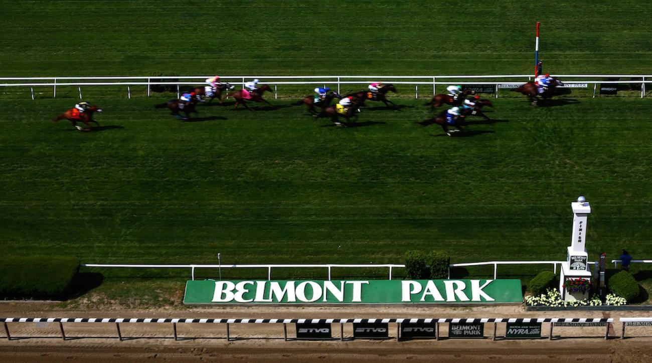 belmont park helwan euthanized