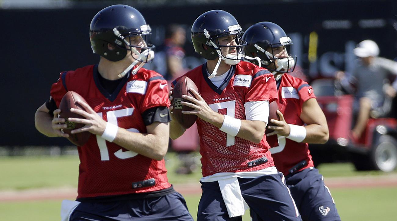 NFL offseason report cards: Houston Texans sign Brian Hoyer, Vince Wilfork