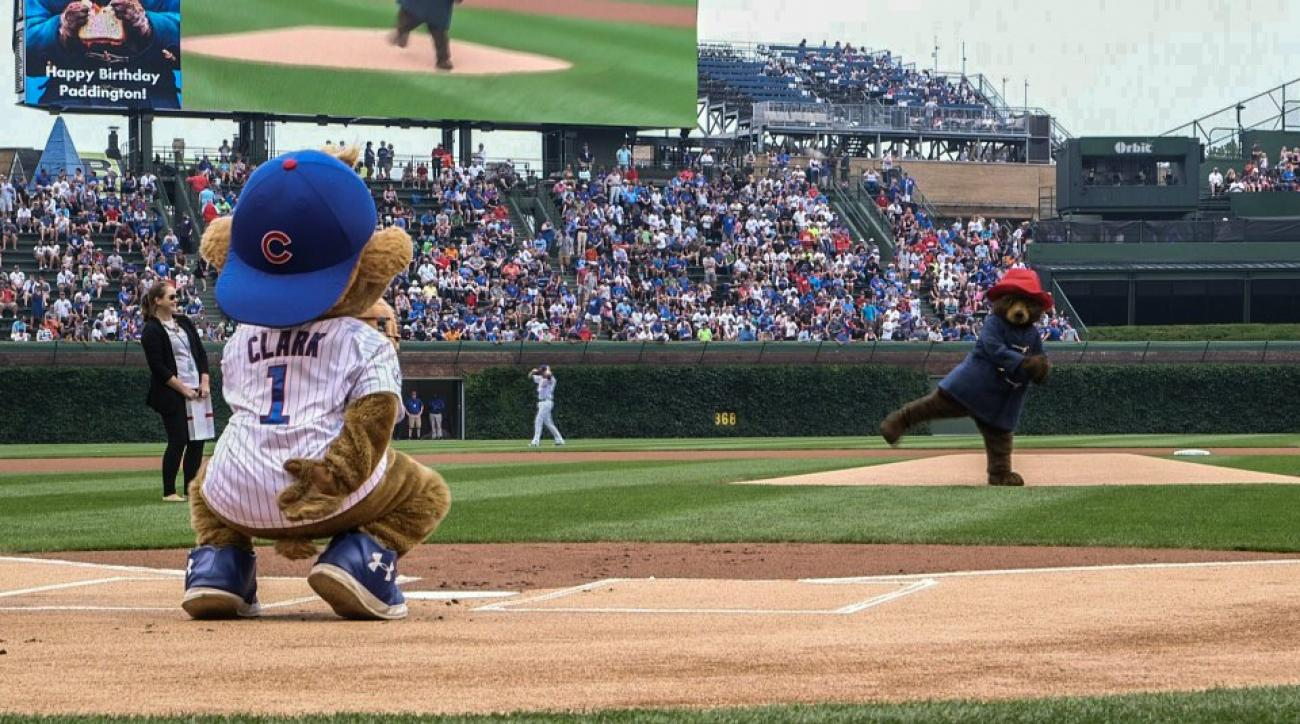 Paddington Bear throws out first pitch at Cubs game