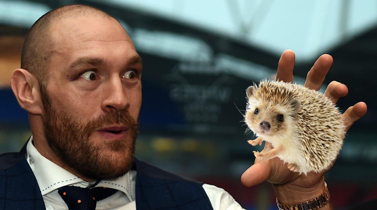 tyson fury boxer controversy eat hedgehog bullfrog