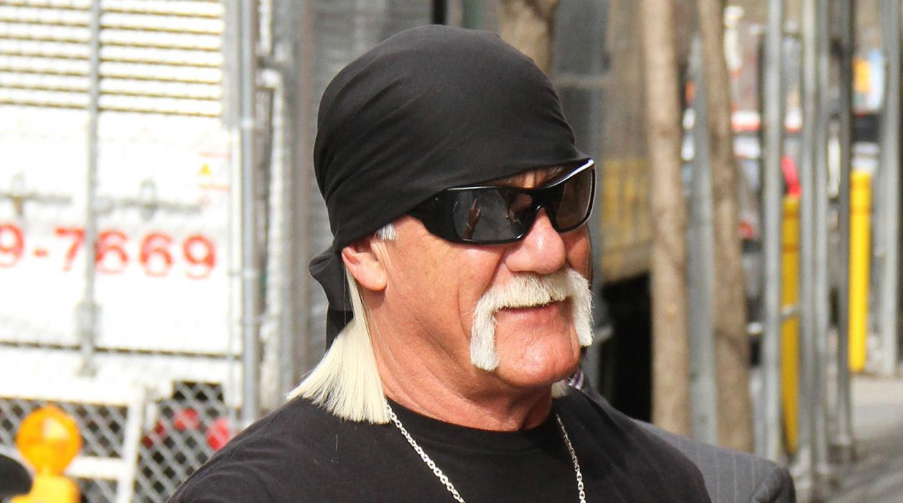 hulk hogan gawker taiwanese animators