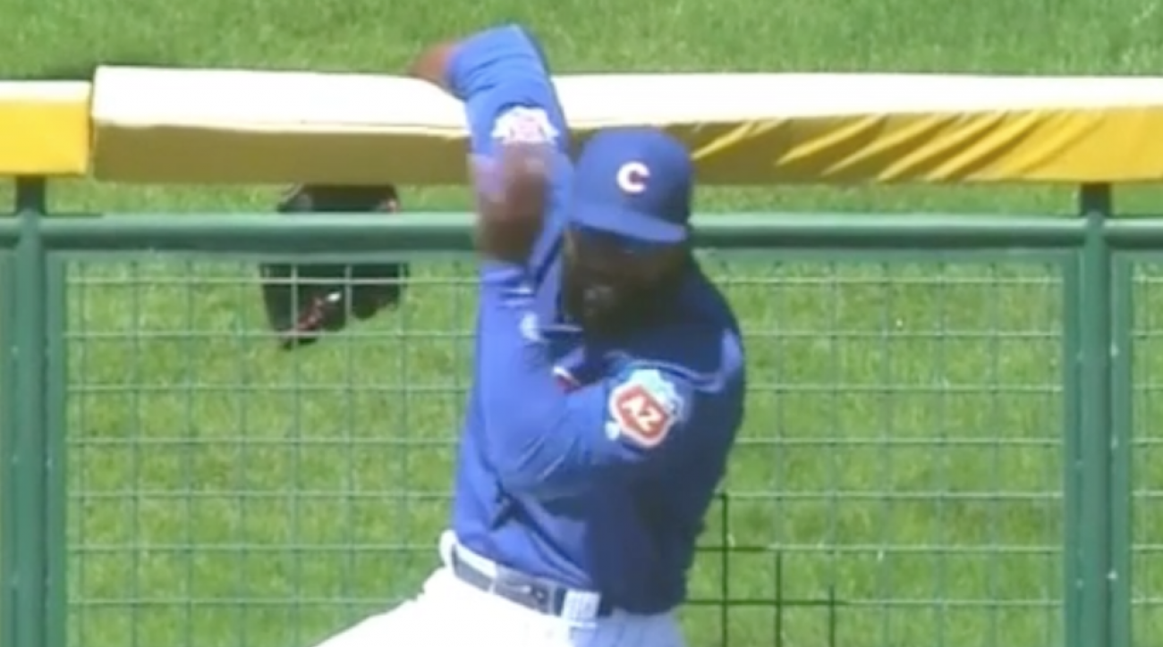 cubs mariners bees