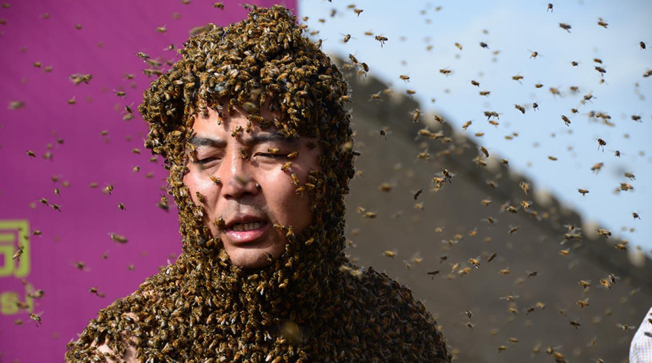 round rock express okc dodgers bee delay