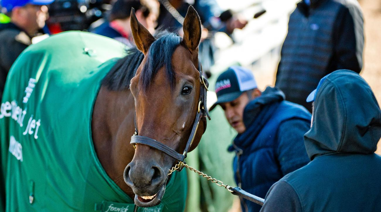 preakness stakes betting odds nyquist favorites
