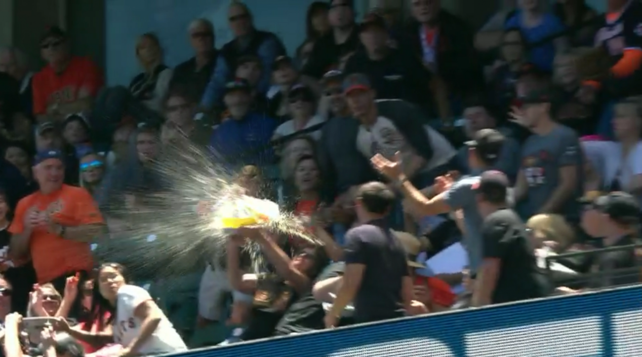 fan beer foul ball fail