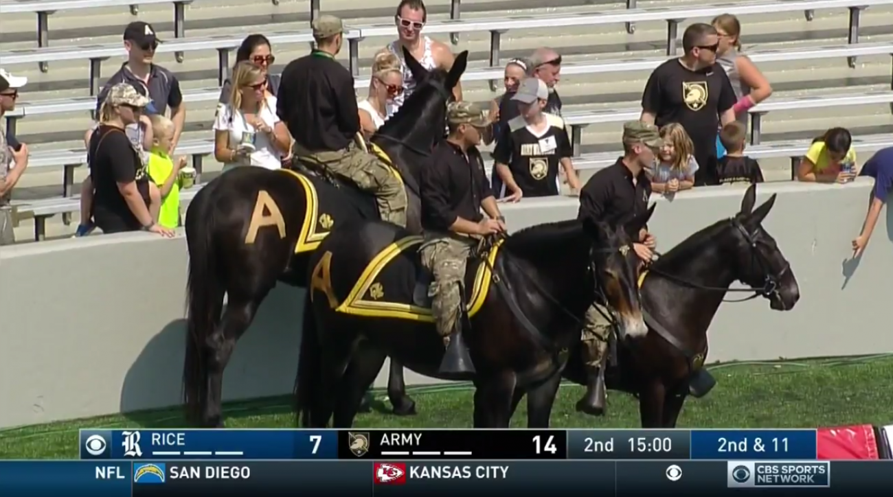 army rice football mule delay video