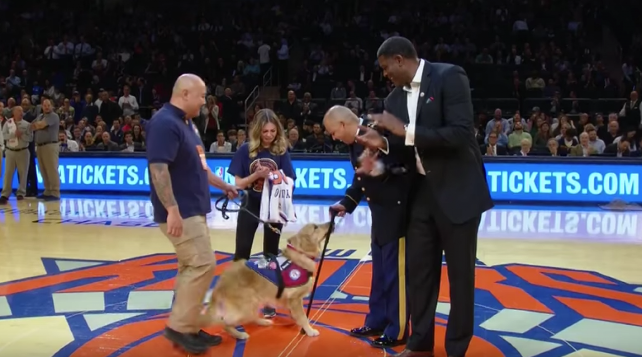 Video: Knicks surprise Army veteran with service dog