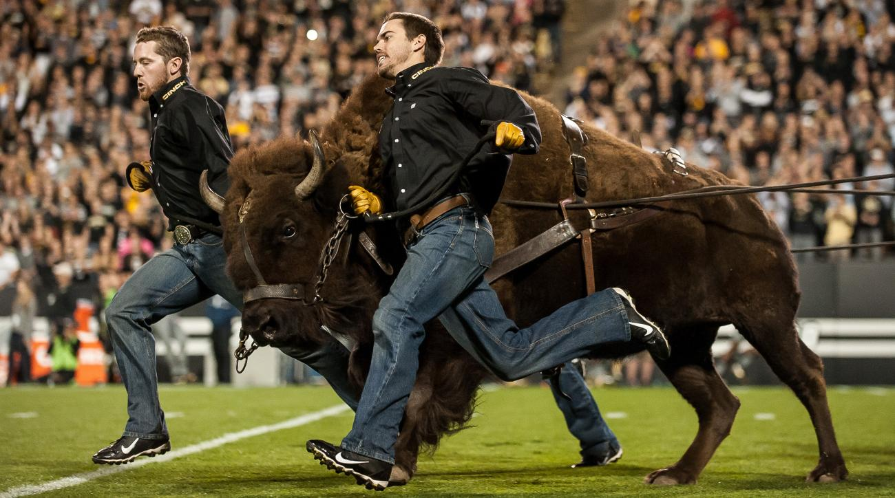 Mannequin challenge: Colorado Buffaloes mascot (video)