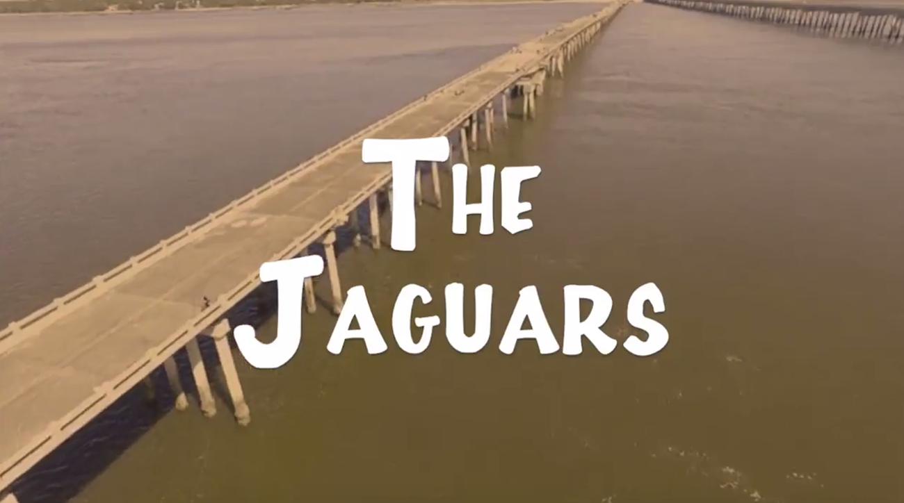 fan turns jaguars into sitcom