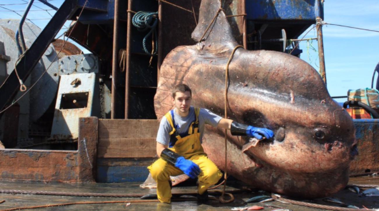 russian fisherman twitter