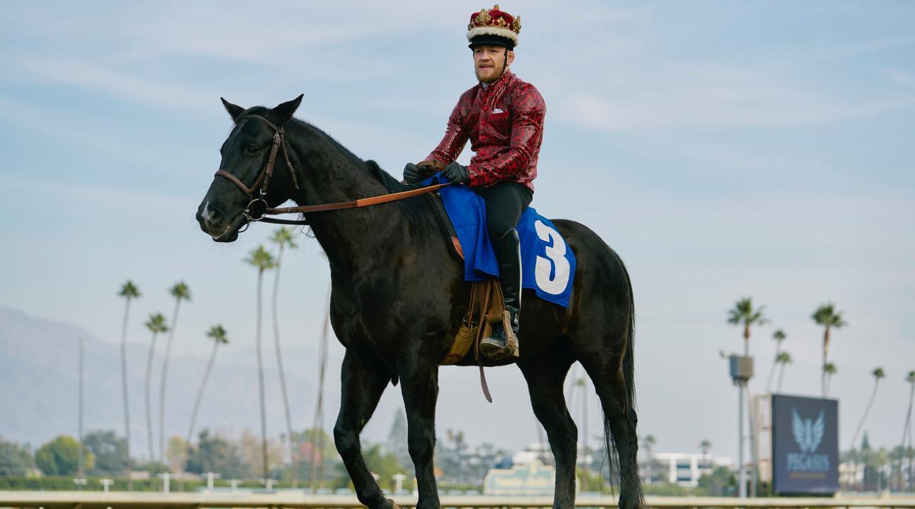 conor mcgregor horse photos