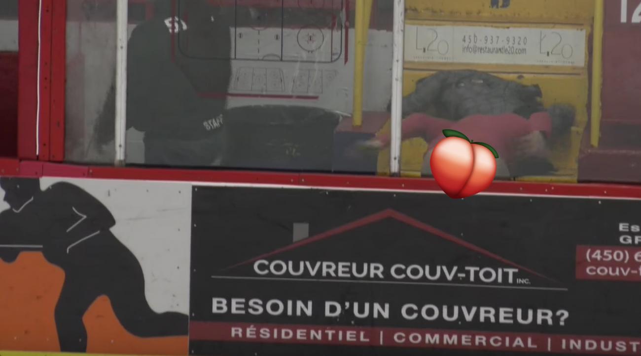 LNAH hockey fan drops pants, moons ref (video)