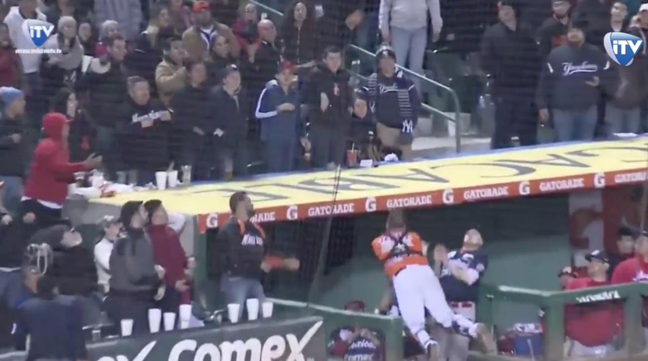 Mexican baseball league catcher dives down steps (video)
