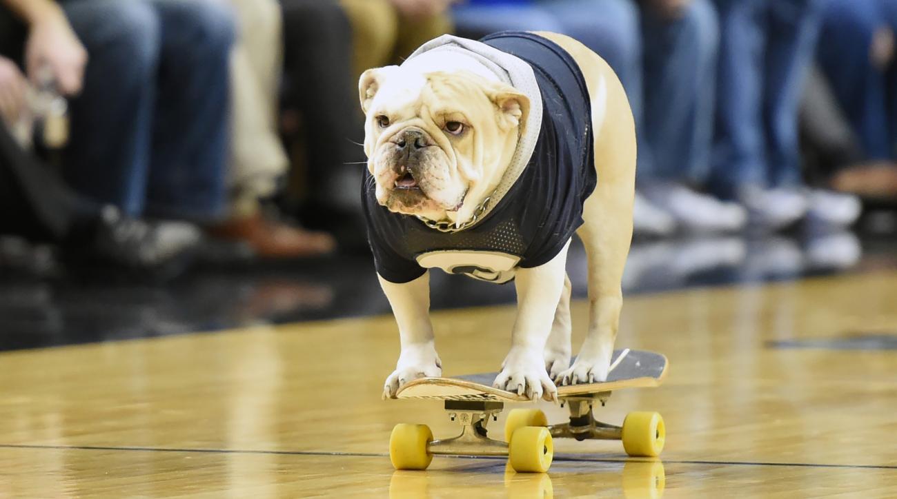 Georgetown mascot fanny pack Jack bulldog