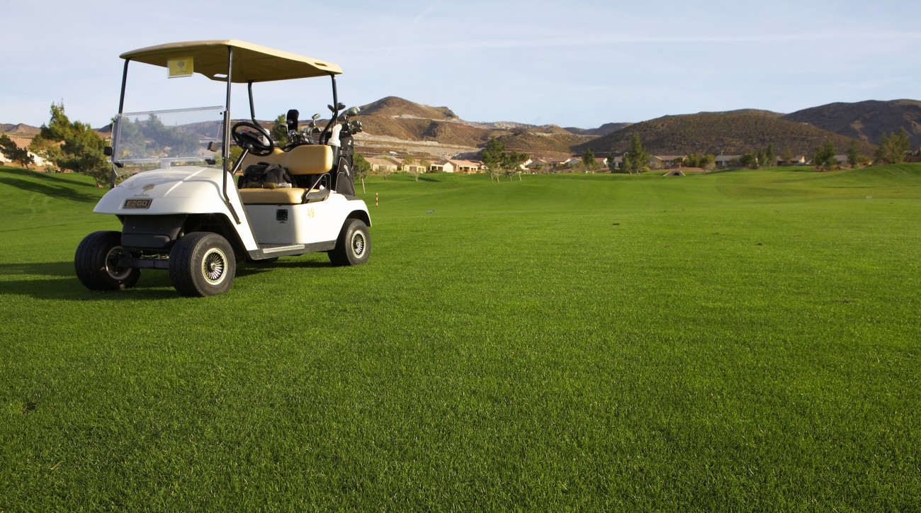 A caddie in Northern Idaho has filed suit after being injured in a golf cart crash.