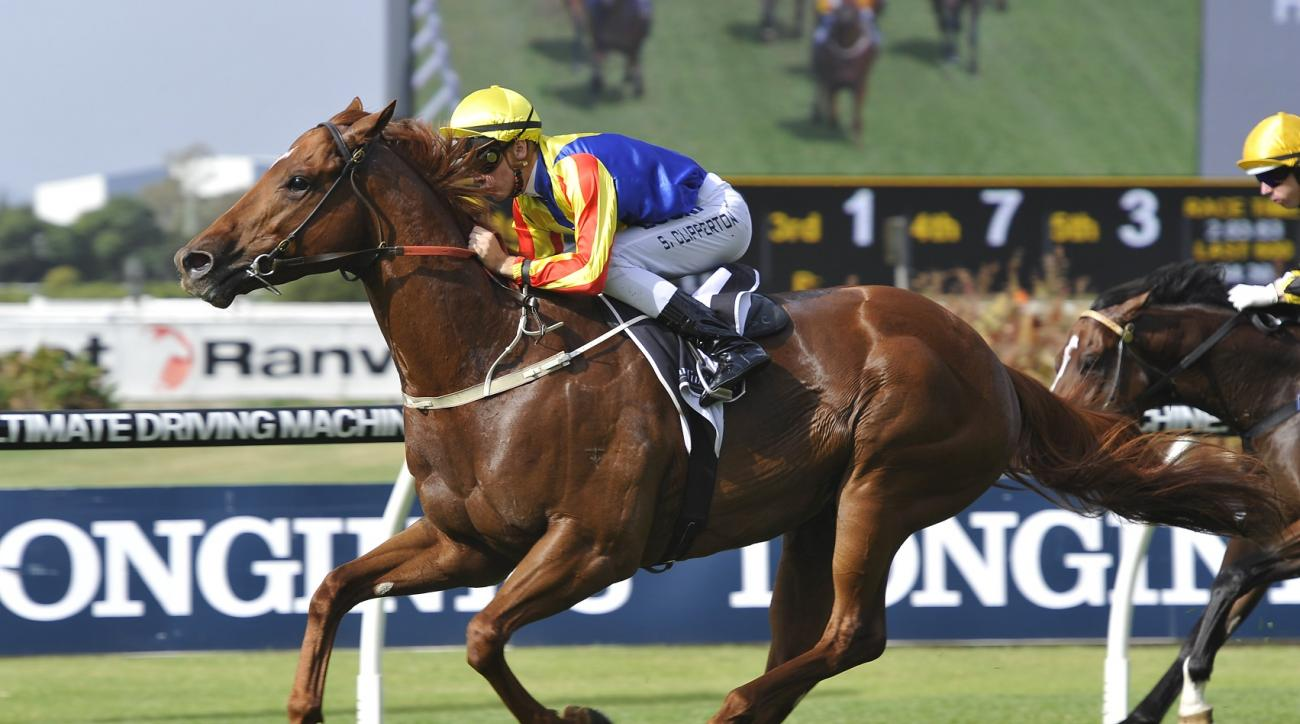 Spieth the Racehorse