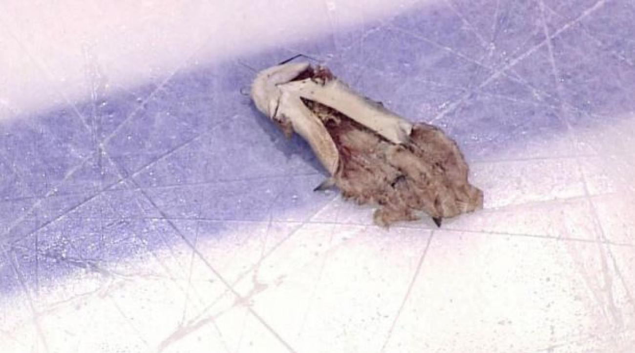 Charges dropped for Preds fan who threw catfish on ice in Pittsburgh