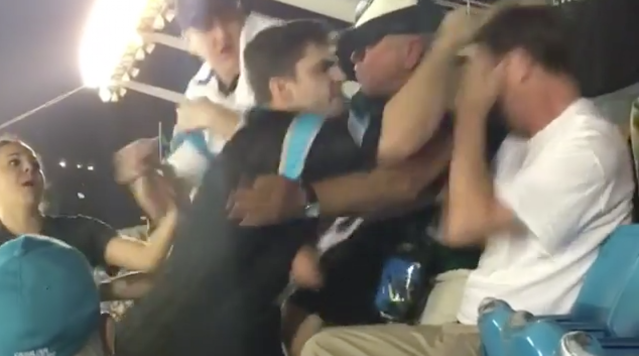 Panthers fan fight: Man punched in face (video)