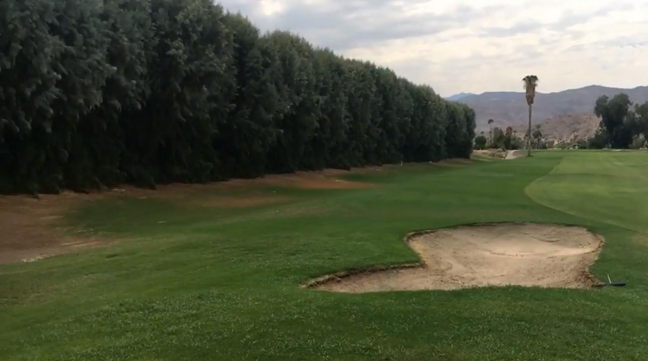 A view of some of the tamarisk trees that lineTahquitz Creek Golf Course in Palm Springs, Calif.